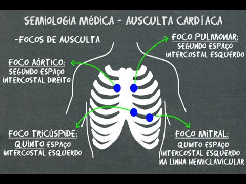 Semiología cardiaca: Auscultación