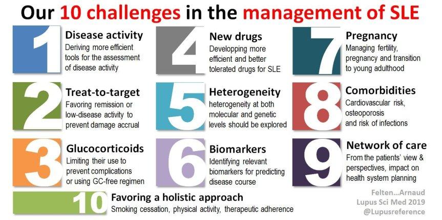 Los 10 desafíos contemporáneos más importantes en el manejo delLES